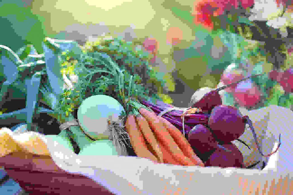 10 Tips On Modern Healthy Life